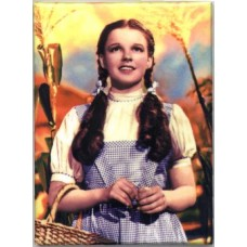 Wizard of Oz Dorothy Magnet