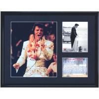 Elvis Hawaii Framed Print Large